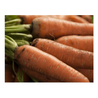 Fresh Carrots at the Union Square Greenmarket Postcard