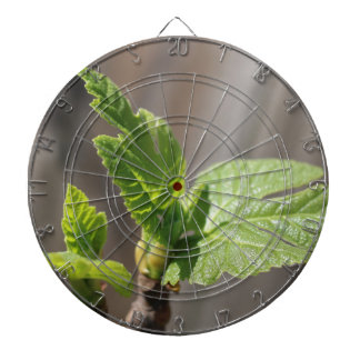 Fresh Fig Leaf Dartboard
