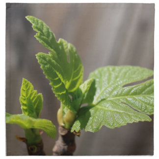 Fresh Fig Leaf Napkin