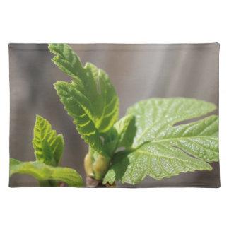 Fresh Fig Leaf Placemat