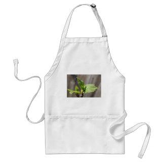 Fresh Fig Leaf Standard Apron