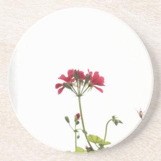 Fresh Flower Coaster