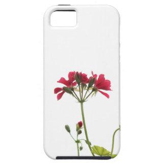 Fresh Flower iPhone 5 Case