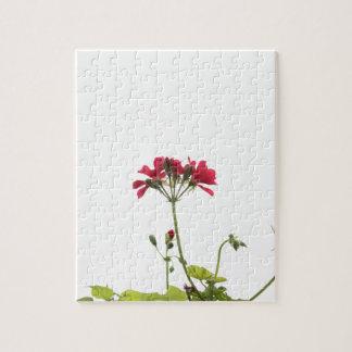 Fresh Flower Jigsaw Puzzle
