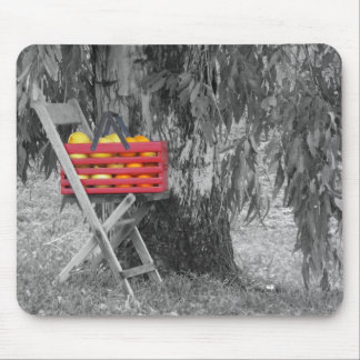 Fresh Fruit by Leslie Peppers Mouse Pad