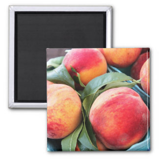 Fresh Fruit - Peaches Magnet