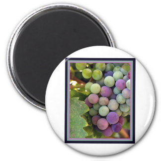 Fresh Grapes and Wine 2 Inch Round Magnet