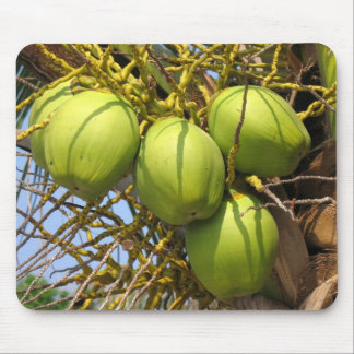 Fresh Green Coconuts Mouse Pad