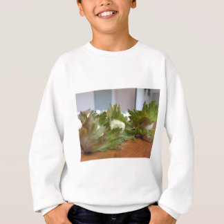 Fresh green hazelnuts on a wooden table sweatshirt