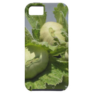 Fresh green hazelnuts on glittering background case for the iPhone 5