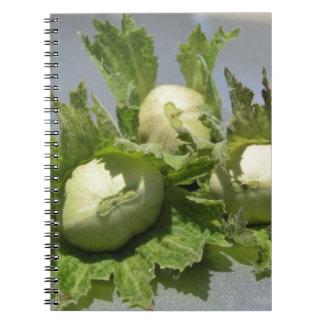 Fresh green hazelnuts on glittering background spiral notebook