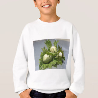Fresh green hazelnuts on glittering background sweatshirt