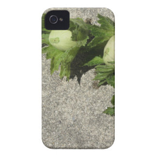 Fresh green hazelnuts on the floor iPhone 4 case
