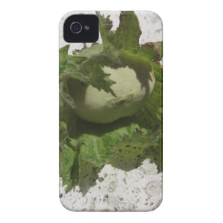 Fresh green hazelnuts on the floor iPhone 4 cover