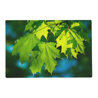 Fresh green maple leaves laminated placemat