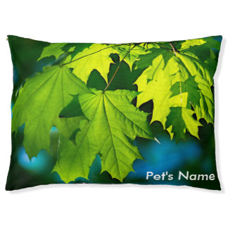 Fresh green maple leaves pet bed