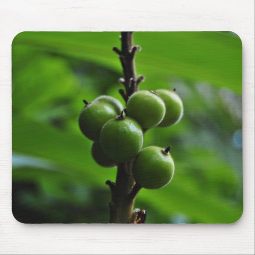 Fresh Green Nature Mouse Pads
