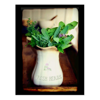 Fresh Herbs Cards
