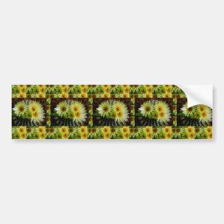 FRESH look CACTUS CACTI Flower Show: Greetings Bumper Sticker