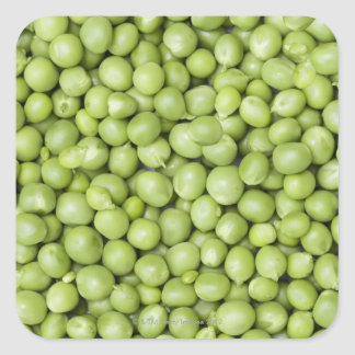 Fresh organic peas 2 square sticker
