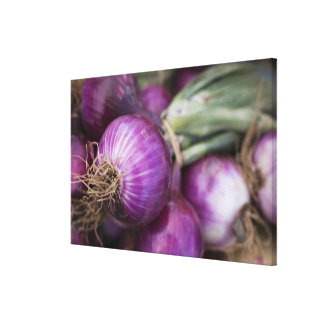Fresh red onions at a New Jersey farmer's Canvas Print