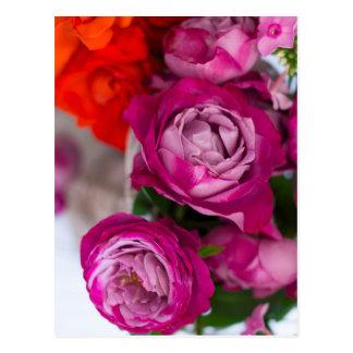 fresh roses postcard