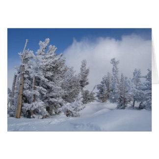 Fresh Snow on Mammoth Mountain Card