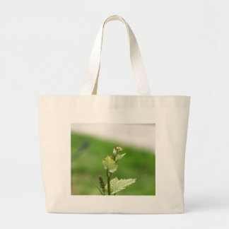 Fresh sprouts of grape vine large tote bag