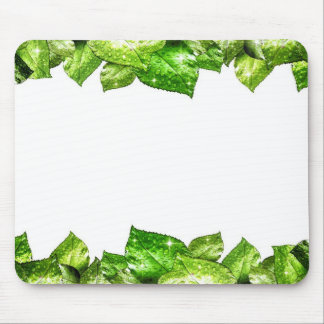 Fresh Water Drops on Green Plant Leaf Mouse Pad