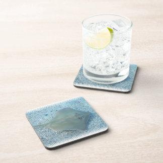 Fresh Water Stingray Cork Coasters