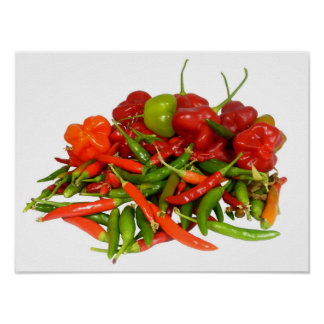 Freshly Picked Chillies Poster