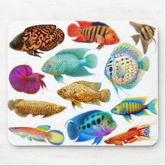 Freshwater Aquarium Fish Mousepad