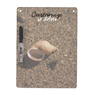 Freshwater Snail Shell; Customizable Dry Erase Board With Keychain Holder