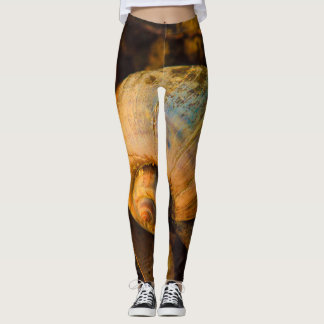 Freshwater Snail Shell Funky Brown Leggings