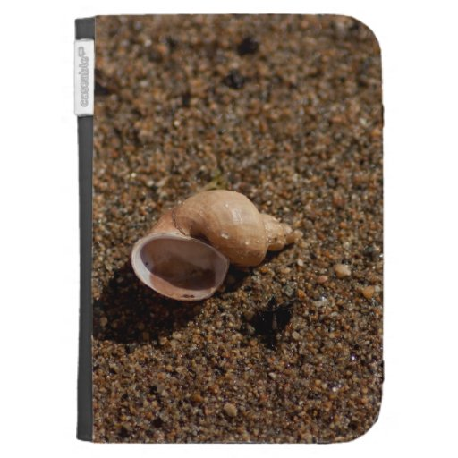 Freshwater Snail Shell; No Text Kindle Keyboard Case