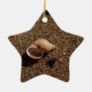 Freshwater Snail Shell; No Text Ceramic Star Ornament