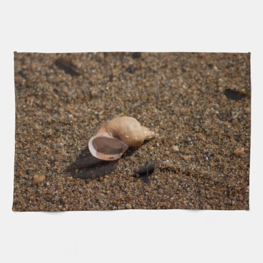 Freshwater Snail Shell; No Text Hand Towels