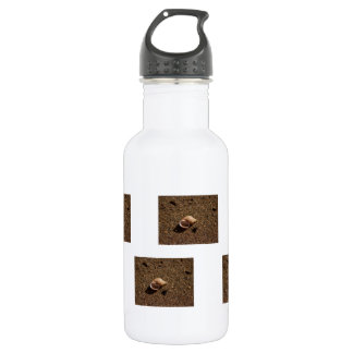 Freshwater Snail Shell; No Text 18oz Water Bottle