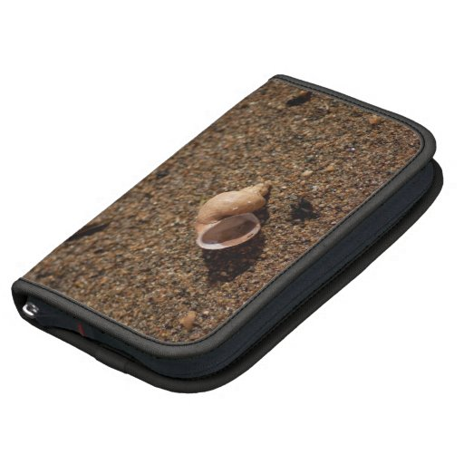 Freshwater Snail Shell; No Text Planner