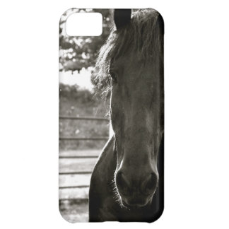 Fresian Horse IPhone Case