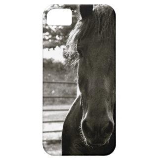 Fresian Horse IPhone Case