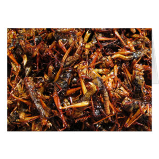 Fried Grasshopper (Takkataen Thot) Asian Food Card