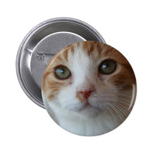 Friend Pinback Buttons