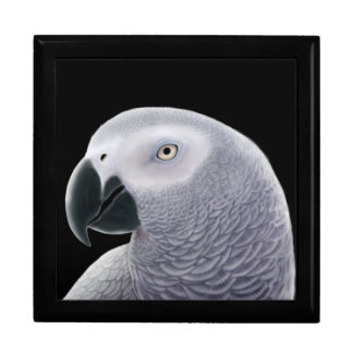 Friendly African Gray Parrot Gift Box