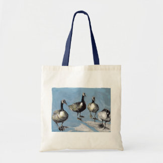 Friendly Canada Geese 2012