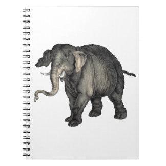 friendly elephant 🐘 notebook