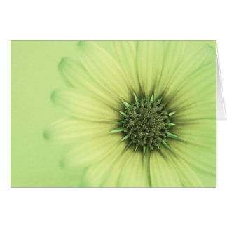 Friendly floral photocard with inside quote card