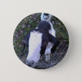 Friendly Goat 2 Inch Round Button