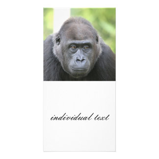 friendly gorilla photo card