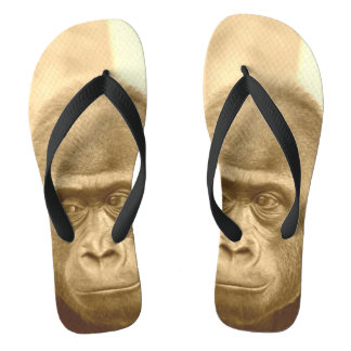 friendly gorilla, sepia flip flops